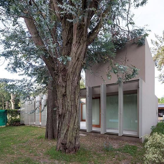 009_javier-agustin-rojas_montaldo-loma-verde_0574+73